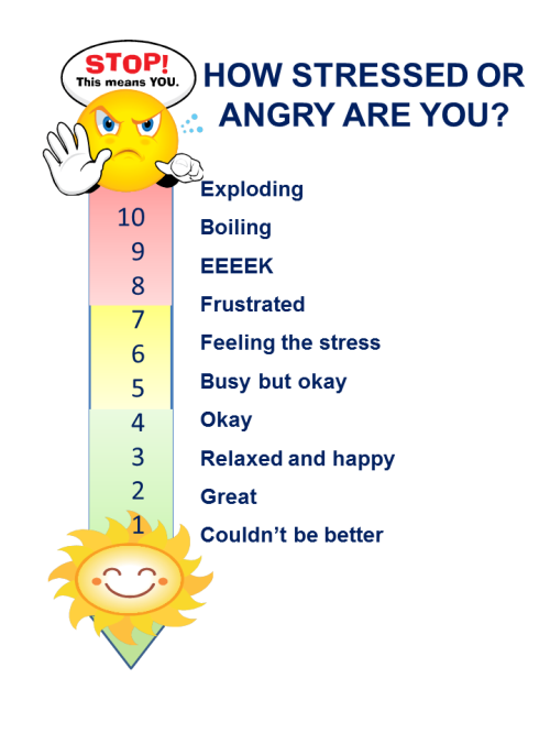 An Emotional Fitness Feeling Thermometer